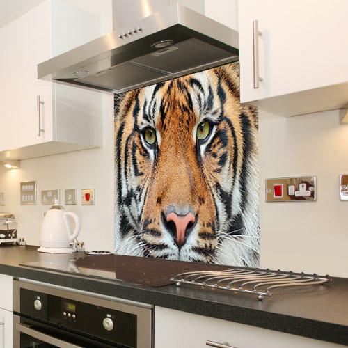 Close-up detail portrait of tiger. Sumatran tiger_475654012_splashback