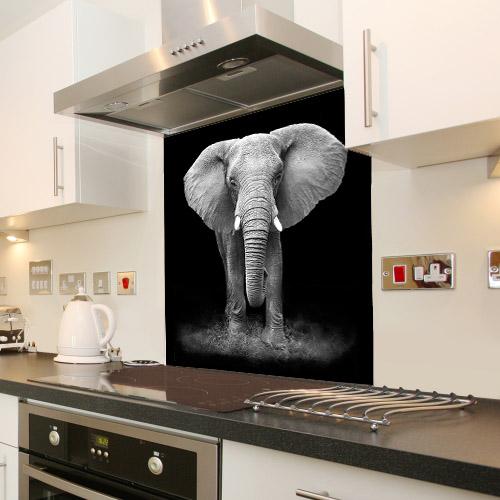 Elephant_129316361_splashback