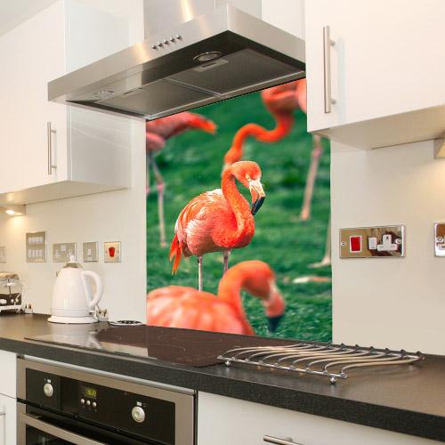 Flamingos_149242955_splashback
