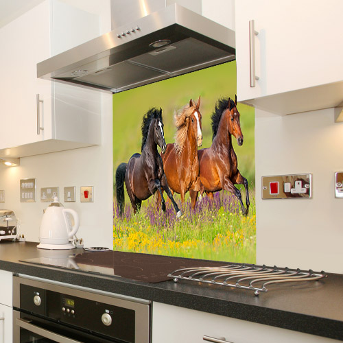 Galloping Horses_576779830_splashback