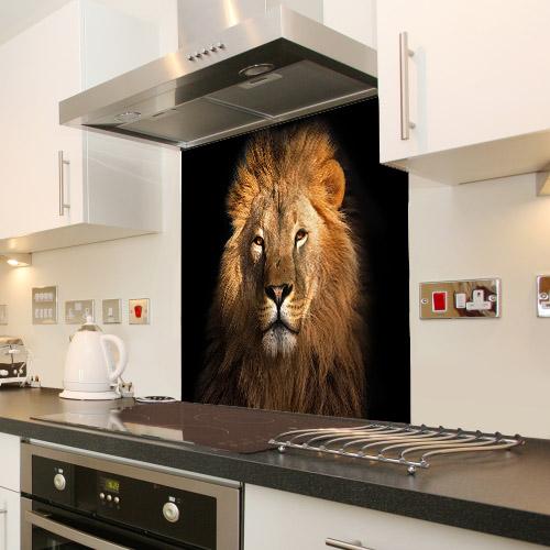 Lion king isolated on black_564253519_splashback